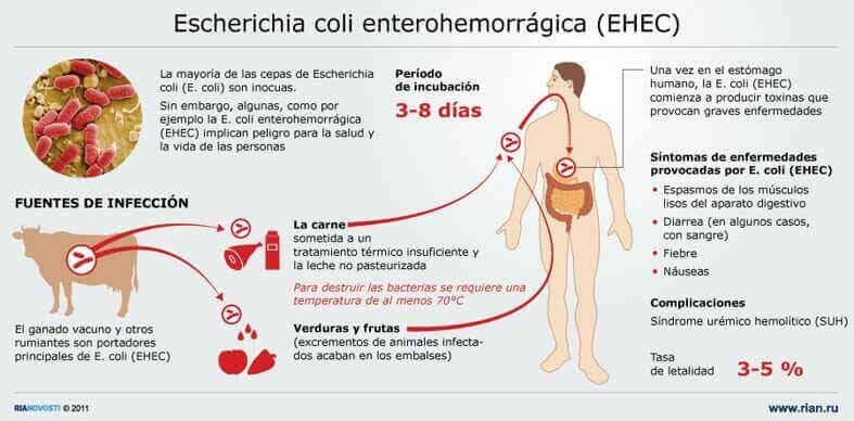 infeccion por escherichia-coli