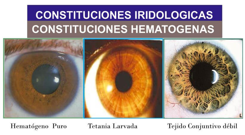 Iridologia-en-Barcelona-eixample