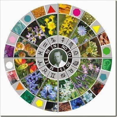 Zodiaco-flores-Bach