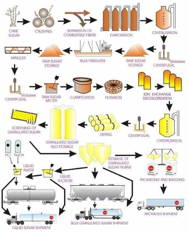 elaboracion del azucar