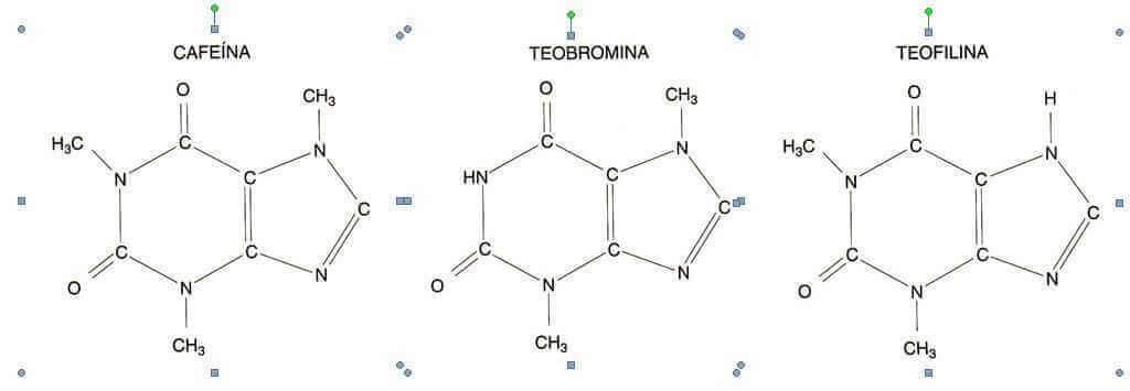 metilxantinas