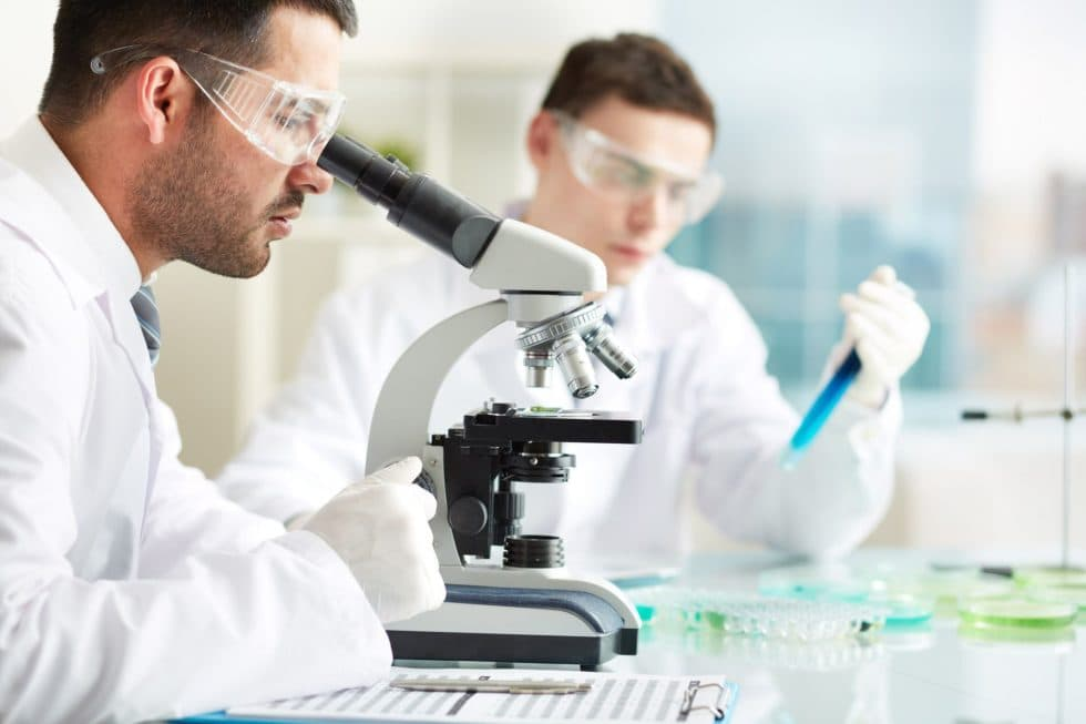 microbiologia-alimentos-