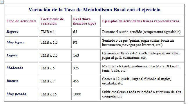 tasa metabolica y ejercicio
