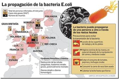 distribucion escherichia coli
