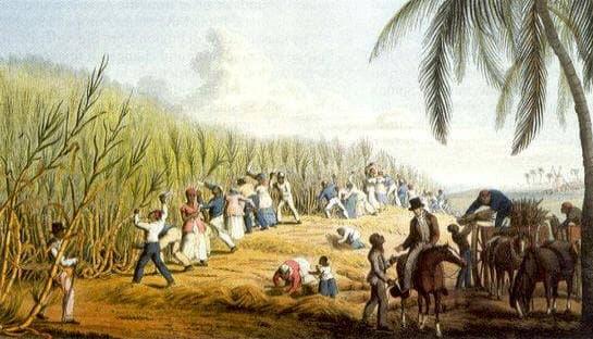 azucar y esclavitud