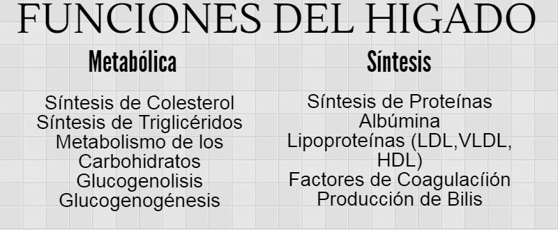 funciones del hígado