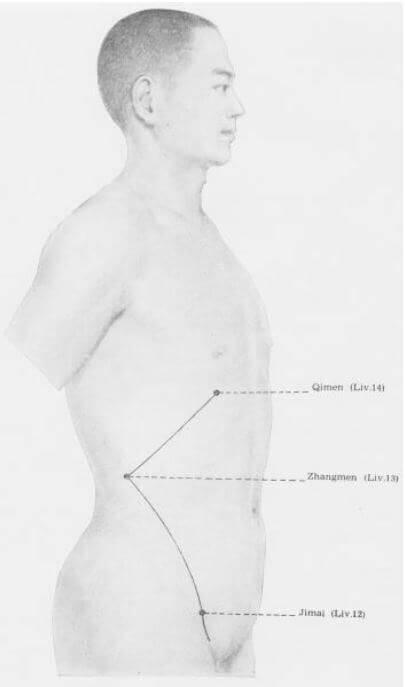 meridiano del higado superior