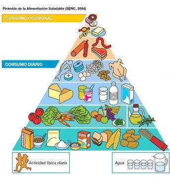 piramide alimentaria nueva