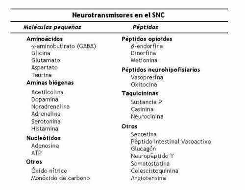 tabla neurotransmisores